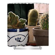Succulent Backlight Shower Curtain