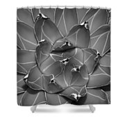 Succulent Ir Shower Curtain