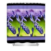 Succulent Swirl Shower Curtain