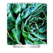 succulents Rutgers University Gardens Shower Curtain