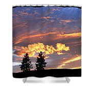 Sudden Splendor Shower Curtain