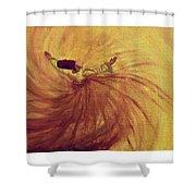 Sufi Shower Curtain