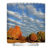 Sugar Maple Sunrise Along Route 31 Shower Curtain