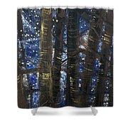 Sukkot II Stars 2015035  Shower Curtain