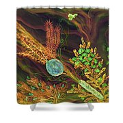 Sukkot-the Lulav Shower Curtain