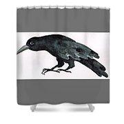 Sulky Bird Shower Curtain