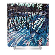 Sumac Snow Shadows Shower Curtain