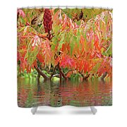 Sumac Tree Autumn Reflections Shower Curtain