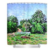Summer Afternoon. Shower Curtain