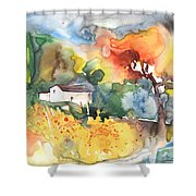 Summer Afternoon Shower Curtain