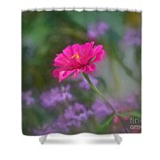 Summer Afternoon Summer Afternoon Shower Curtain