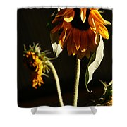 Summer And The Beat Of Your Heart Shower Curtain