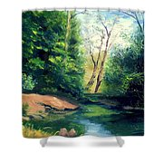 Summer At Storm Shower Curtain