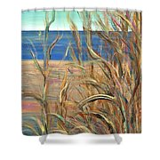 Summer Beach Grasses Shower Curtain