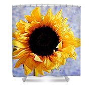 Summer Beauty Shower Curtain