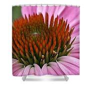 Summer Beauty Shower Curtain
