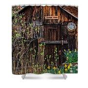 Summer Cabin Shower Curtain