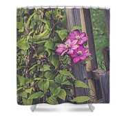 Summer Color Shower Curtain