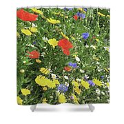 Summer Colours Shower Curtain