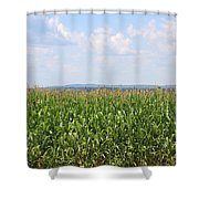 Summer Corn And Blue Skies In Maine  Shower Curtain