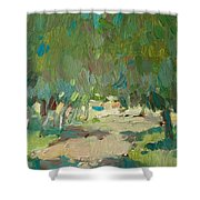 Summer Day In City Park. Trees Shower Curtain
