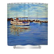 Summer Day Shower Curtain