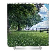 Summer Days Shower Curtain