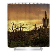 Summer Desert Skies  Shower Curtain