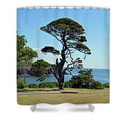 Summer Dunmore East Shower Curtain