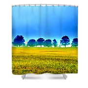 Summer Field Shower Curtain