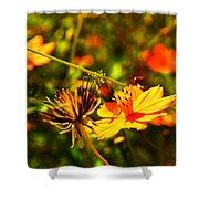 Summer Field Shower Curtain