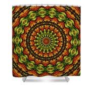 10698 Summer Fire Mask 54 Kaleidoscope 3 Shower Curtain