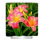 Summer Flame Shower Curtain
