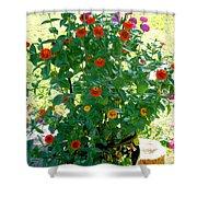 Summer Flowers 10 Shower Curtain