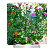 Summer Flowers 13 Shower Curtain