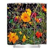 Summer Flowers Shower Curtain