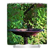 Summer Fountain Impasto Shower Curtain