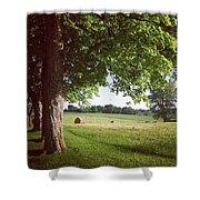 Summer Harvest Shower Curtain