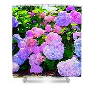 Summer Hydrangeas #2 Shower Curtain