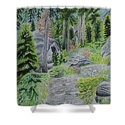 Summer In Game Shower Curtain