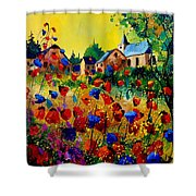 Summer In Sosoye Shower Curtain