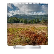 Summer In The Bald Hills 1 Shower Curtain