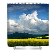 Summer Is Coming Soon Shower Curtain