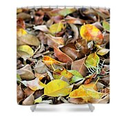 Summer Leaves For Fall Shower Curtain
