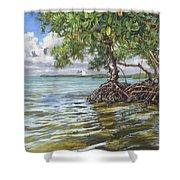 Summer Mangrove Melody Shower Curtain