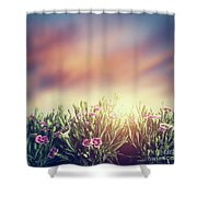 Summer Meadow Flowers In Grass At Sunset. Vintage Shower Curtain