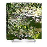 Summer Mountain Creek Shower Curtain