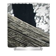 Summer On The Dock Shower Curtain