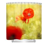 Summer Painting Shower Curtain