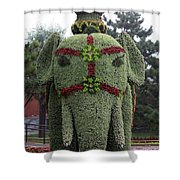 Summer Palace Elephant 2 Shower Curtain